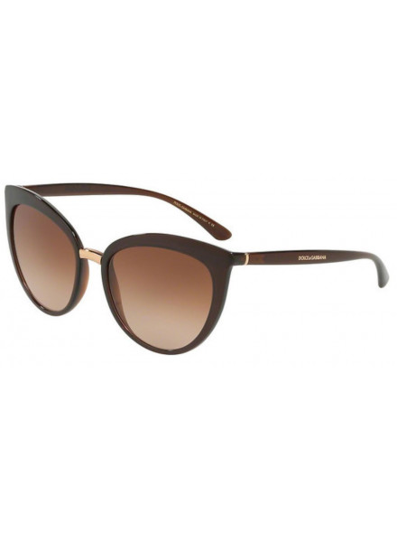 DOLCE & GABBANA DG6113 TRANSPARENT BROWN/BROWN GRA S.55